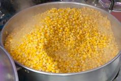 Cottura a vapore del seme del cereale Fotografie Stock Libere da Diritti