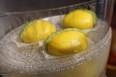 Cottura a vapore fatta a mano dei panini del Durian immagine stock