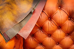 Couch with examples of leather coverings Stock Photos