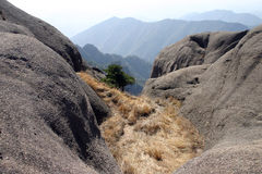 Couch grass in mountains. Scenic view of dry couch grass in mountain range, China Royalty Free Stock Photo