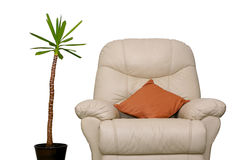 Couch and plant stock images