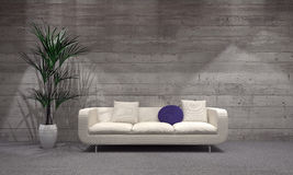 Couch and Plant on Vase at the Modern Living Room Stock Images