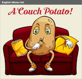 A couch potato Royalty Free Stock Photos