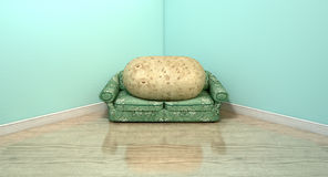 Couch Potato On Old Sofa Stock Photo