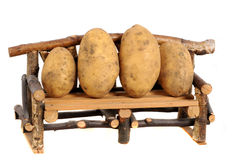 Couch potatoes Royalty Free Stock Photography
