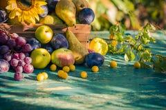 Coucher de soleil saisonnier de lumière de panier de fruits de fin d'été de jardin Images stock