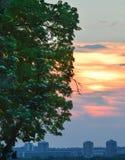 Coucher du soleil à Belgrade photographie stock libre de droits