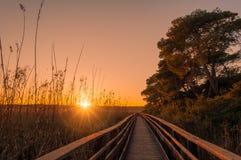 Coucher du soleil à l'étang en Sardaigne image libre de droits