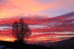 Coucher du soleil à l'arrière-plan de nature : Nuages rouges Photo stock