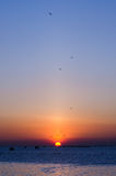 Coucher du soleil à la côte de la mer Photographie stock libre de droits
