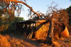 Coucher du soleil à la ferme Photo stock