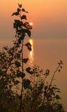 Coucher du soleil à la mer baltique Photos libres de droits