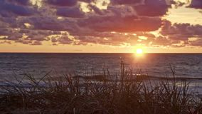 Coucher du soleil à la mer baltique avec l'herbe banque de vidéos