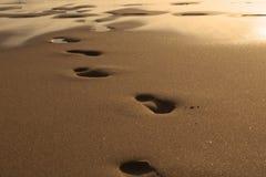 Coucher du soleil à la mer Empreintes de pas dans le sable La mer, égalisant Calmez vers le bas Reste sur la mer Photo libre de droits