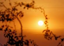 Coucher du soleil à la mer morte, avec vue sur la côte de l'Israël et une branche avec des feuilles dans le premier plan sur la p image stock