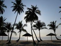 Coucher du soleil à la plage de Zanzibar photo libre de droits
