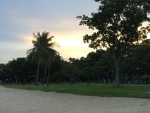 Coucher du soleil à la plage, palmiers Photographie stock libre de droits