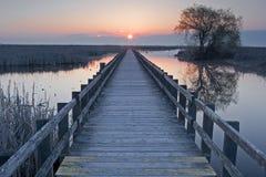 Coucher du soleil à la promenade de marais au point Pelee, Canada Images stock