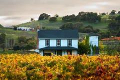 Coucher du soleil à une maison dans une vigne de Sonoma Photo libre de droits