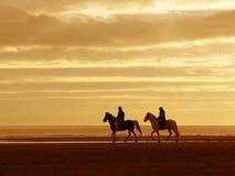 Coucher du soleil équestre jaune Photographie stock libre de droits