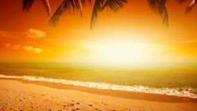 Coucher du soleil étonnant banque de vidéos