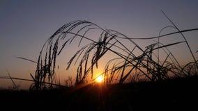 Coucher du soleil étonnant Photo libre de droits