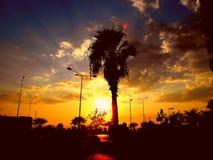 Coucher du soleil étonnant de rue, paume photographie stock