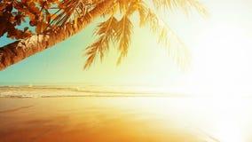 Coucher du soleil banque de vidéos