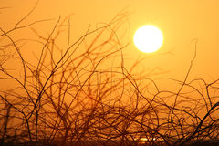 coucher du soleil Photo libre de droits