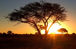 Coucher du soleil africain Photographie stock libre de droits