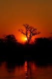 Coucher du soleil africain Photos libres de droits
