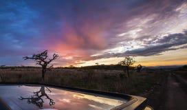 Coucher du soleil africain avec l'arbre, Afrique du Sud Photographie stock