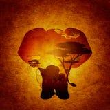 Coucher du soleil africain avec le grunge d'éléphant Images libres de droits