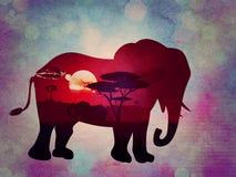 Coucher du soleil africain avec le grunge d'éléphant Image stock