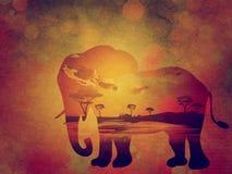 Coucher du soleil africain avec le grunge d'éléphant Photo stock