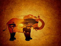 Coucher du soleil africain avec le grunge d'éléphant Image libre de droits