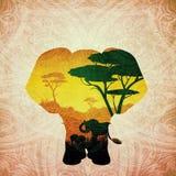 Coucher du soleil africain avec le grunge d'éléphant Photo libre de droits