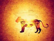 Coucher du soleil africain avec Lion Grunge Photos libres de droits
