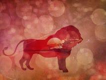 Coucher du soleil africain avec Lion Grunge Photographie stock libre de droits