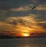 Coucher du soleil africain chez Clifton 2ème Images libres de droits