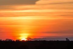 Coucher du soleil africain magnifique Images libres de droits