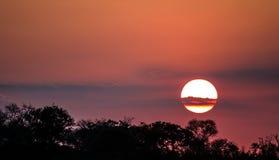Coucher du soleil africain magnifique Photographie stock libre de droits