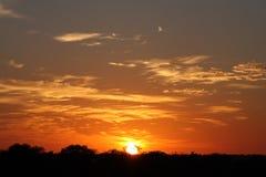 Coucher du soleil africain, réserve de sable de Sabi Photographie stock libre de droits
