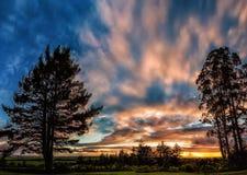 Coucher du soleil ain les arbres Photo libre de droits