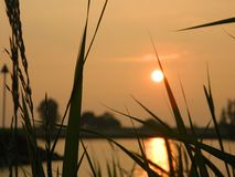 Coucher du soleil Ameiden, Pays-Bas images libres de droits