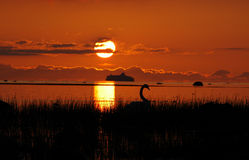 Coucher du soleil au bord de la mer Photos libres de droits
