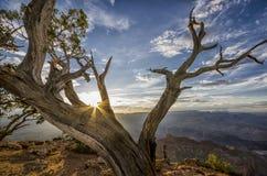 Coucher du soleil au canyon grand Photos stock