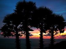 Coucher du soleil au cap Promthep, Phuket, Thaïlande Images stock