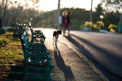 Coucher du soleil au Cuba Photos libres de droits