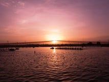 Coucher du soleil au-dessus d'étang de crevette Photo stock